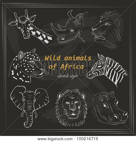 Set of wild animals of Africa in sketch style on a dark background