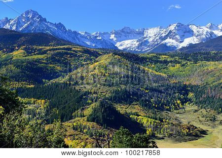 Alpine Scenery Of Yellow Aspen And Snow Covered Mountains During Foliage Season