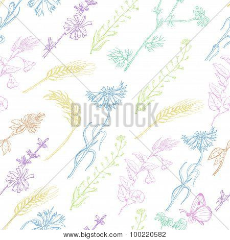 Seamless pattern with wild plants on a white background