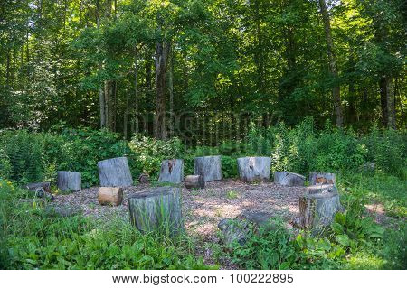 circle of log seats  in woods
