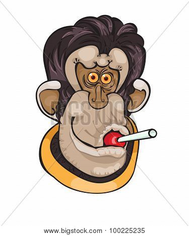 Cute Monkey with candy on a dot background