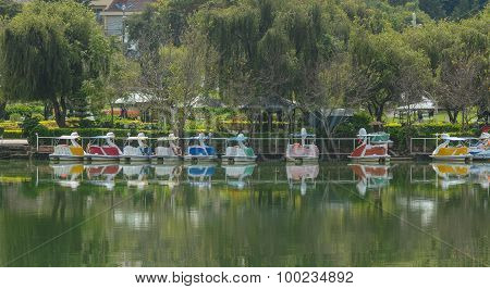 View Of Xuan Huong Lake, Dalat