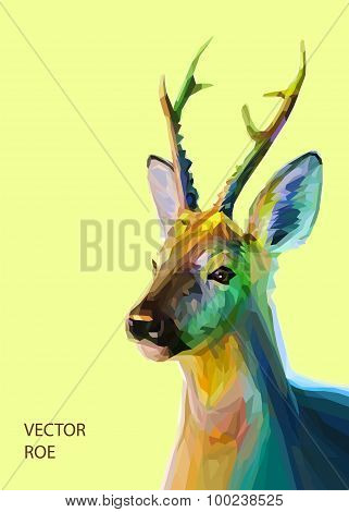 Roe polygonal illustration. Vector  eps 10