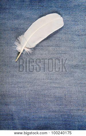 Feather On Denim Background