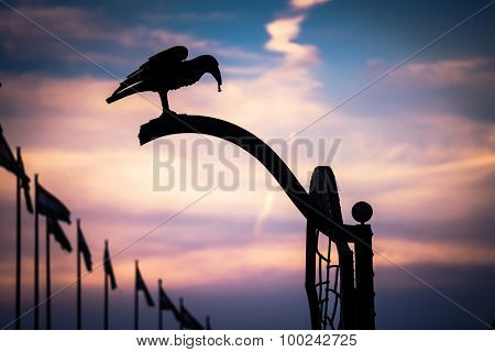 silhouette of iron crow on evening sky backgroung in Budapest