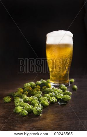 Green Hops With A Glass Of Fresh Beer.