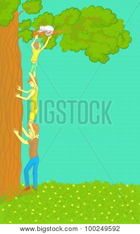 Boys Get a Cat Out of Tree