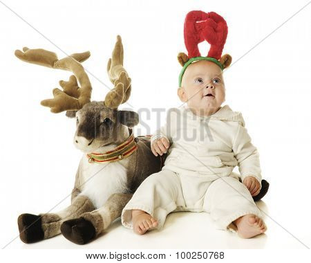 An adorable baby boy wearing reindeer antlers looking up in wonder as he sits by a toy reindeer.  On a white background.