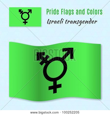 Israeli Transgender And Genderqueer Pride Flag With Correct Color Scheme