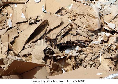 Cardboard in landfill