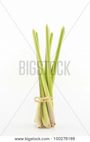 Lemon Grass Or Oil Grass.