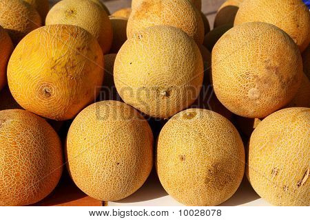 Galia Yellow Melon Cucumis Melo Reticulatus