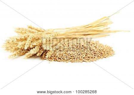 Ears Of Wheat And Wheat Grains Isolated On White