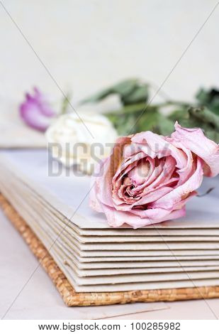 withered roses on an old book