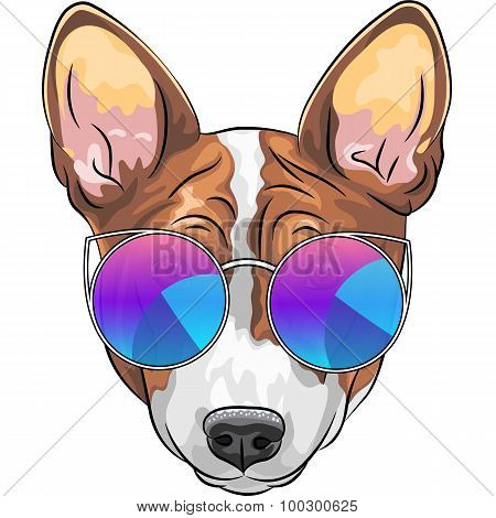 vector hipster serious dog Beagle in glasses