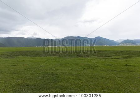 beautiful green grassland in Shangri-La, China