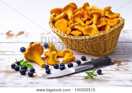 Bilberry and chanterelles and knife on a table