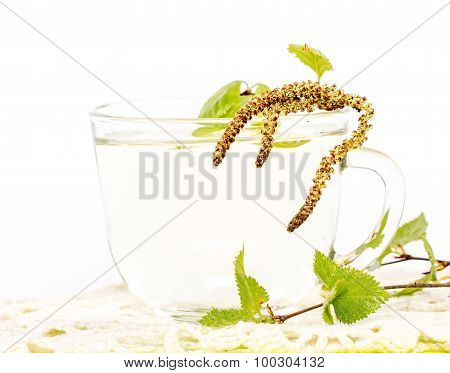 Isolated transparent cup of birch sap