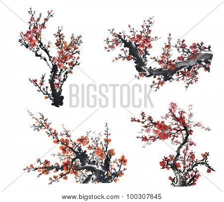 collection of Chinese painting of flowers, plum blossom, on white background