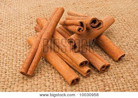 Cinnamon On A Canopy