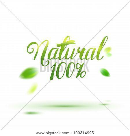 Natural Calligraphy Logo