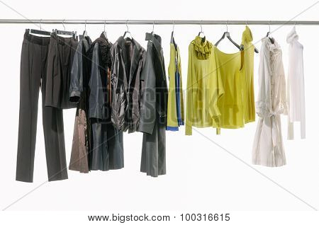 Set of female dress with plants isolated on hanging