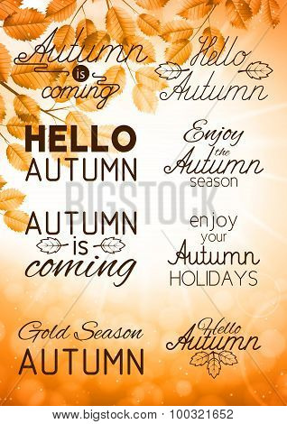 Set Of Autumn Labels And Signs On An Autumn Background