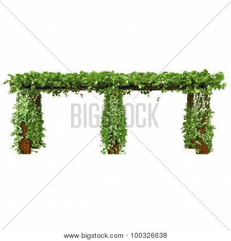 Large pergola for the garden