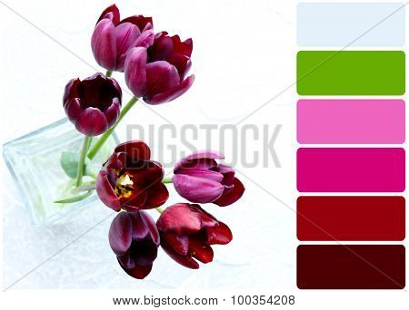 Beautiful violet tulips in glass vase and palette of colors