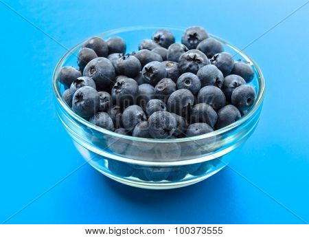 ripe blueberries in bowl isolated on cyan.