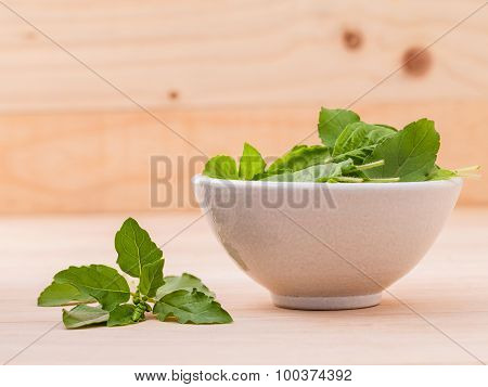 Alternative Medicine Fresh Holy Basil Leaves On Wooden Background.