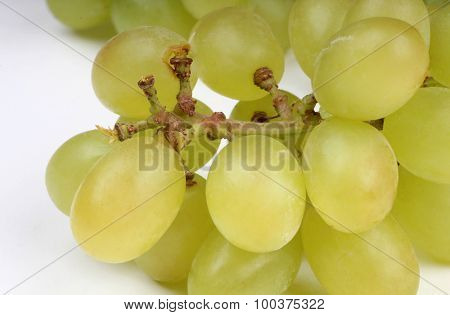 Bunch of ripe juicy grapes on the table
