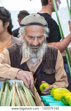 JERUSALEM, ISRAEL - OKTOBER 8, 2014: Traditional market before holiday of Sukkot.  Religious Jew with grey beard carefully examines ritual citrus - etrog