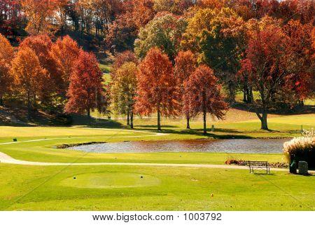 Folhagem de Outono no golfe