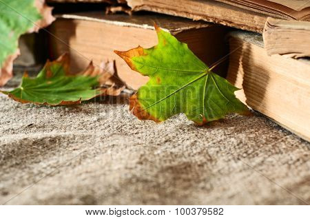 Autumn Leaf Close Up Of A Vintage Books On The Table