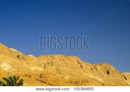 Judean Desert In Israel