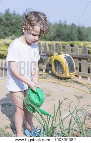Young Gardener Watering The Garden