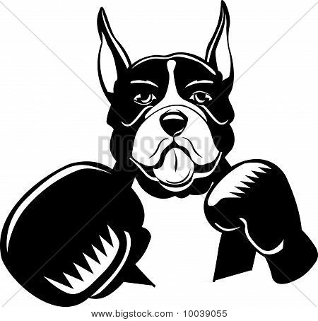 Boxing Boxer Cartoon