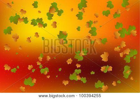 Autumn Leaf Fall.vector