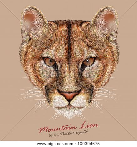 Vector Portrait of a Mountain Lion