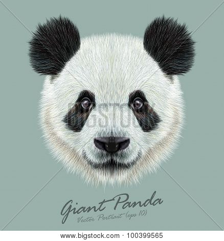Vector Illustrative portrait of Panda
