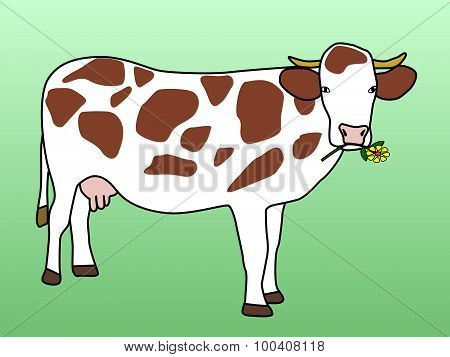 Cow Grazing Flower