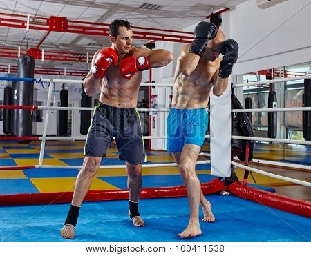 Kickbox Fighters In The Ring