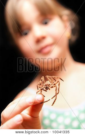girl holding brown spider by one leg and looking surprised