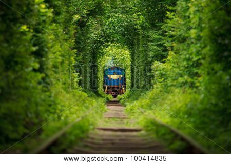 Secret Train 'tunnel Of Love' In Ukraine. Summer
