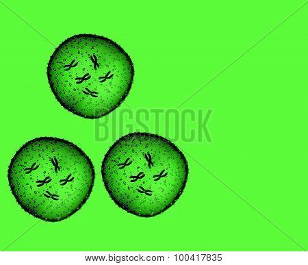 Three Microbe Green