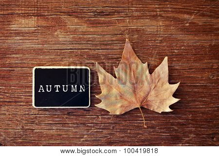 high-angle shot of an autumn leaf and a chalkboard with the word autumn written in it placed on a rustic wooden surface