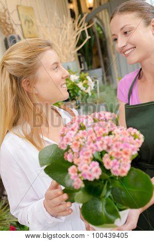 Florist employee