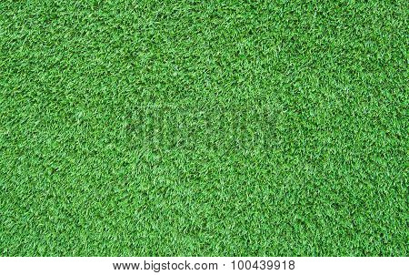 Artificial Grass Field