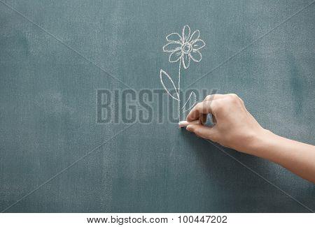 Presenting Flower